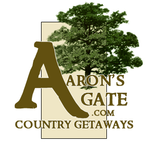 Aarons 2010 Logo