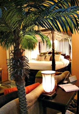 sdbar-parrots-cove-bed-palm-aaronsgate